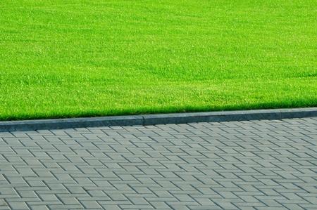 pedestrian walkway: green grass and pedestrian walkway in the park.