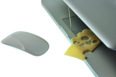 ネズミ捕りおよびマウスのようなチーズとノート パソコン。
