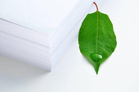 緑の葉と紙のスタック。コンセプト - 環境保護。紙は緑の葉を持つ木をあった。紙使用量の削減を呼び出します。