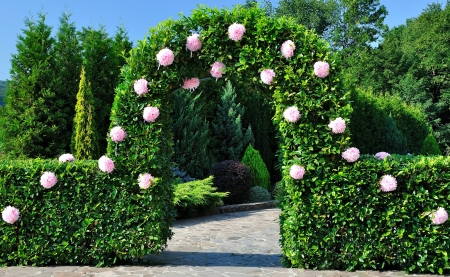 archway: Wedding ceremony. Arch with flowers near shrub and tree.