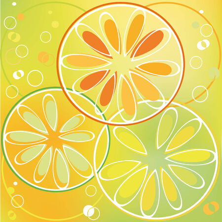 citrus slice  in bubbly drink Illustration