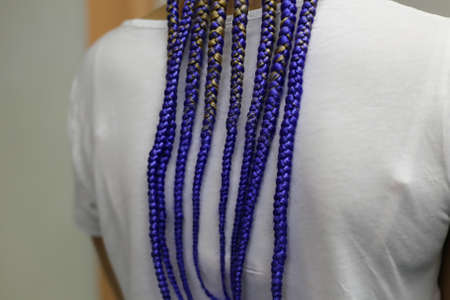 thin braids on the head in an African style, braided pointwise o