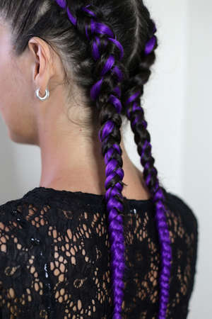 two thin braids of kanekalon purple