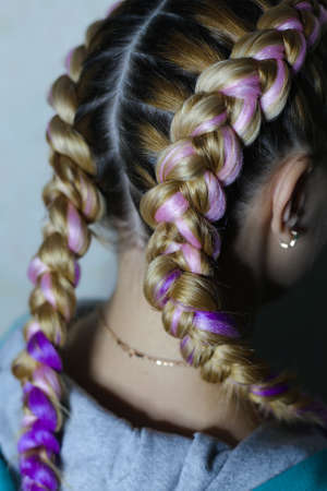 two thick braids with kanekalon rear view close-up Stok Fotoğraf