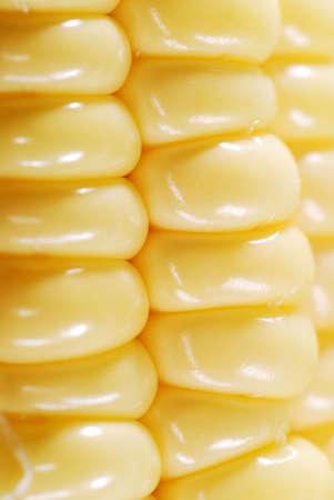Fresh corn closeup background photo