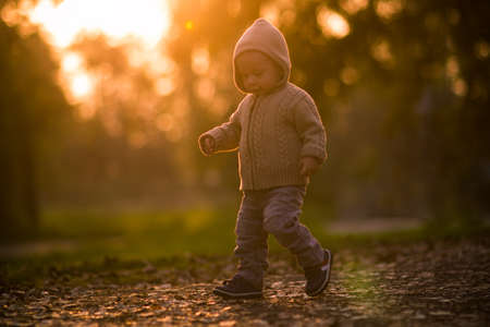toddler walking: Toddler walking in the park, shoot against the sun