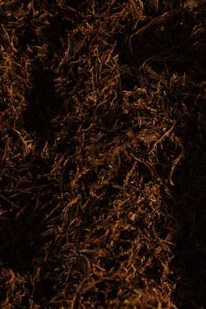Fine cut tobacco detail background Stock Photo