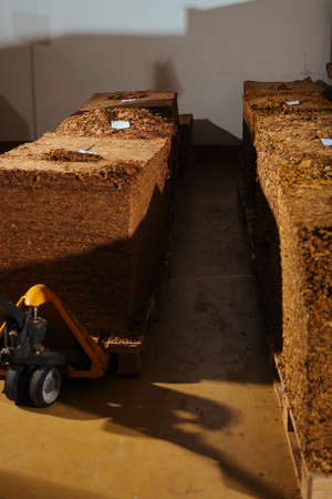Tobacco in factory warehouse prepared for production of cigarettes Stock Photo