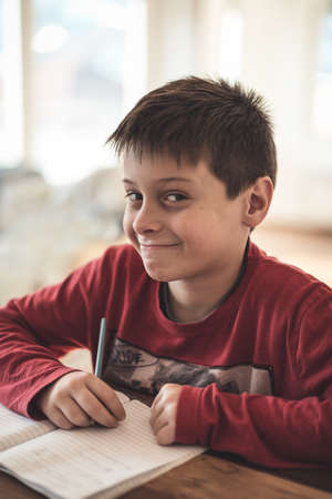 eagerness: Boy doing homework at home Stock Photo