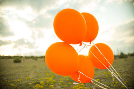 Bright ballons in the meadow Stock Photo