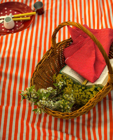 Picnic basket for family in the mountains Stock Photo