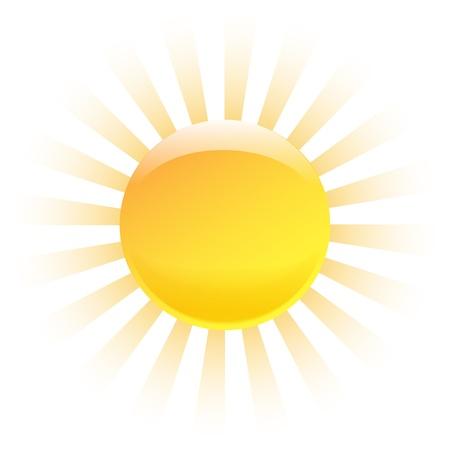 Nice shining sun isolated on white background  Vector illustration Vector