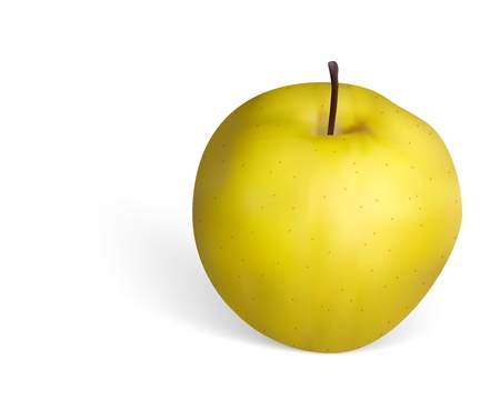 golden apple: Photorealistic golden apple on white background. Vector illustration