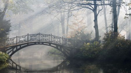 霧の秋の公園で古い橋