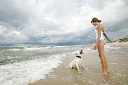 Labrador retriever playing on the beach