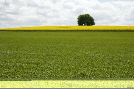 Landscape Stock Photo - 4186389