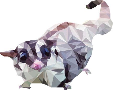 possum: Illustration of cute sugar glider