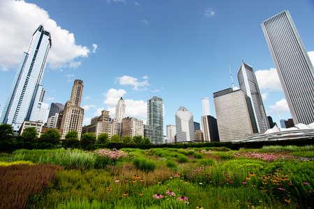 Skyline de Chicago sobre jardines