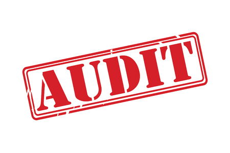 appraise: AUDIT Red Rubber Stamp vector over a white background.