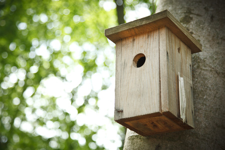 pigeon holes: Bird house hanging from the tree with the entrance hole in the shape of a circle. Stock Photo