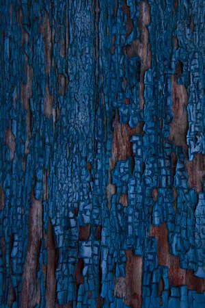 Natural texture sharped wall Astrakhan Banco de Imagens - 91442028
