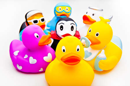 funny bathrooms ducks studio quality