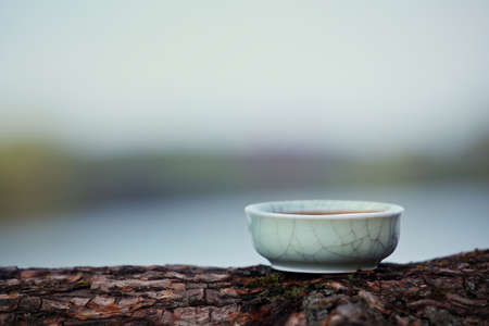 Black Chinese Tea Puer