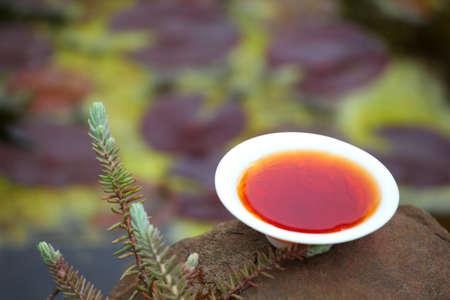 Black Chinese Tea garden