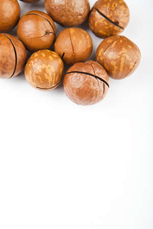 Macadamia nut white background 免版税图像