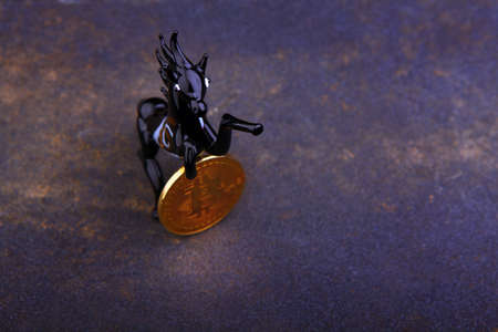 bitcoin coin black horse