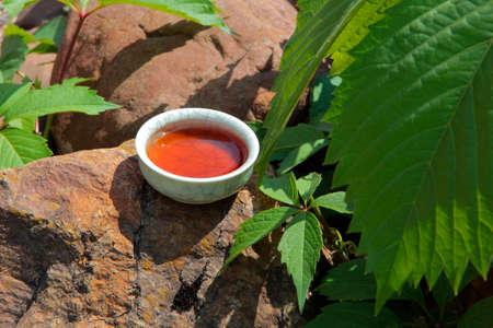 black tea cup stone background virginia creeper nobody