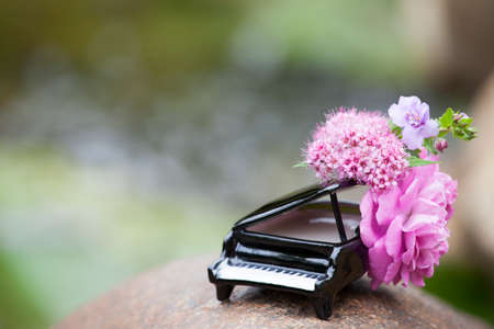 piano flower river background nobody
