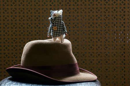vintage hat cat wooden background Banco de Imagens