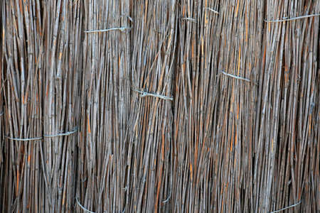 natural dry cane wall background