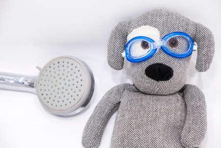 toy dog swimming pool glasses bathroom Stock Photo