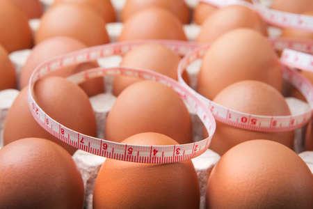 chicken egg paper box background
