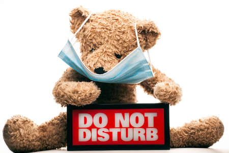 image of toy bear with mask and  do not disturb text