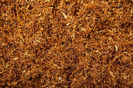 image of dry tobacco background