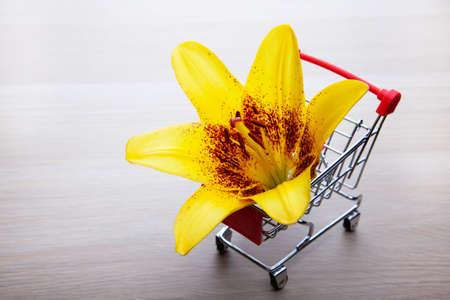 image of trolley flower wooden desk Imagens