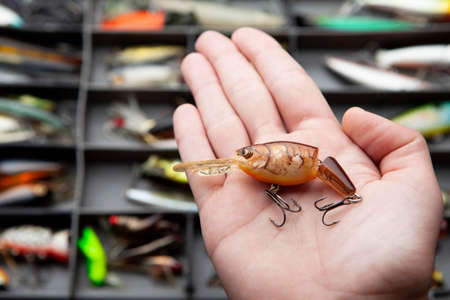 image of fishing bait hand Banque d'images
