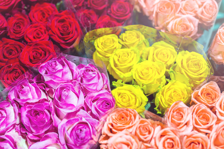 Bunches of multiclored  roses. Fresh flower background. Florist  service.  Wholesale  flower shop. Flower storage. Top view. Stockfoto - 96073138