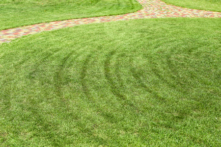 Freshly mowed rows of green lawn at country residence with circled pathway. Landscape design and gardening concept