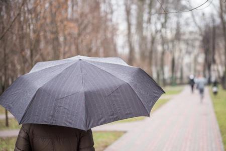 Person walking under dark striped wet umbrella  in a city park during rain at autumn or spring. Weather forecast conept. Bad mood. Imagens