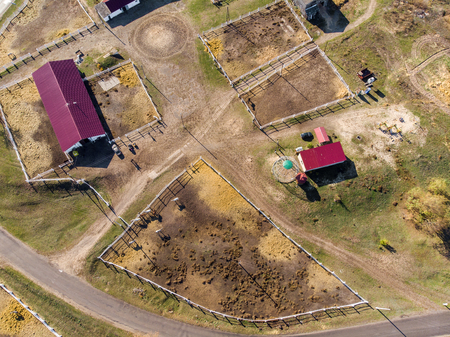 Aerial drone view of rural horse farm or ranch. Village or countryside with horse stables and barns.