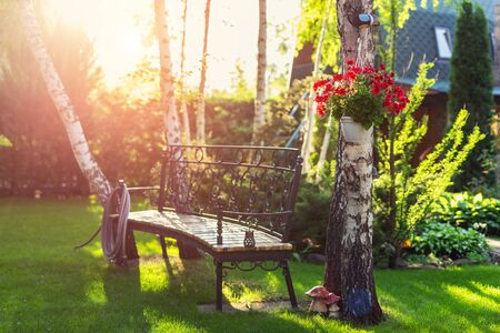 House backyard garden with bench, hanging blossoming flowers watering hose anf trees. Warm summer or autumn evening sunset time.