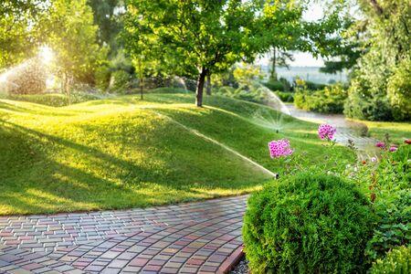 Sistema di irrigazione del giardino automatico con diversi irrigatori installati sotto il tappeto erboso. Progettazione del paesaggio con colline di prati e frutteti irrigati con spruzzatori autonomi intelligenti all'ora del tramonto.