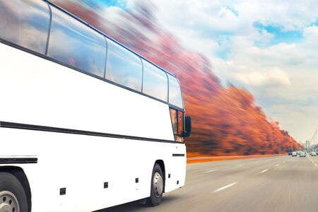 Big luxury comfortable tourist bus driving through golden autumn tree highway on bright sunny day. Blurred motion. Travel and coach tourism concept. road trip and journey by vehicle. Seasonal vacation