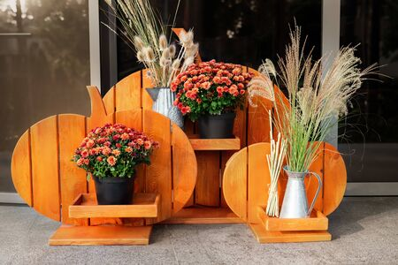 Orange wooden handmade craft halloween style flower-stand with chrysanthemum and dried herb flowers at house porch. Autumn holidays home decoration. Banco de Imagens