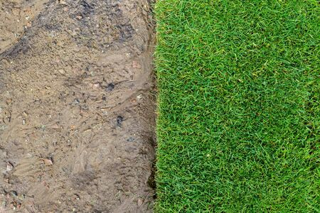 Straigh line of new freshly installed green rolled lawn grass . dirt watered soil prepared for installation at city park or backyard. Before and after laying split.Green Gardening landcaping service Banco de Imagens