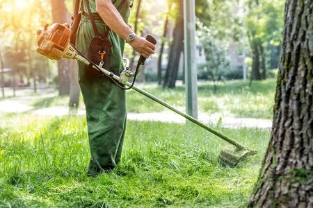 Worker mowing tall grass with electric or petrol lawn trimmer in city park or backyard. Gardening care tools and equipment. Process of lawn trimming with hand mower.